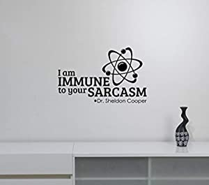 Sheldon Cooper Quote Wall Decal The Big Bang Theory Sticker Vinyl Lettering Humorous Saying Art TV Show Decorations for Home Room Bedroom Comic Decor bt1