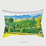 Custom Satin Pillowcase Protector Landscape View Of Tea Farm In Thai Thailand 532856521 Pillow Case Covers Decorative