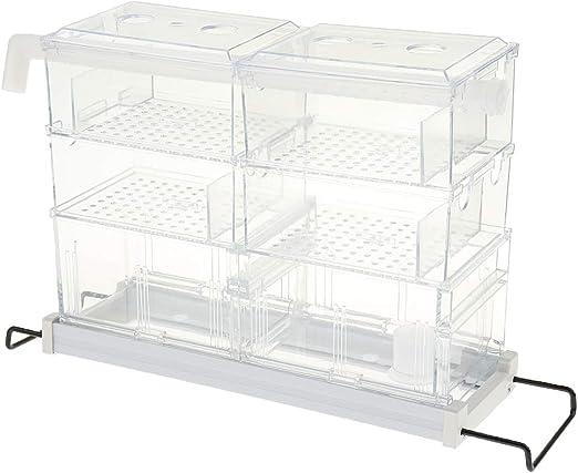 FLAMEER 1 Unidad Caja de Goteo Marco de Acero Inoxidable Aumenta Oxígeno en Agua Creativa Mini Plástico: Amazon.es: Hogar