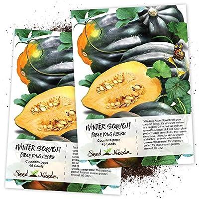 Seed Needs, Table King Acorn Winter Squash (Cucurbita Pepo) Twin Pack of 45 Seeds Each Non-GMO : Garden & Outdoor