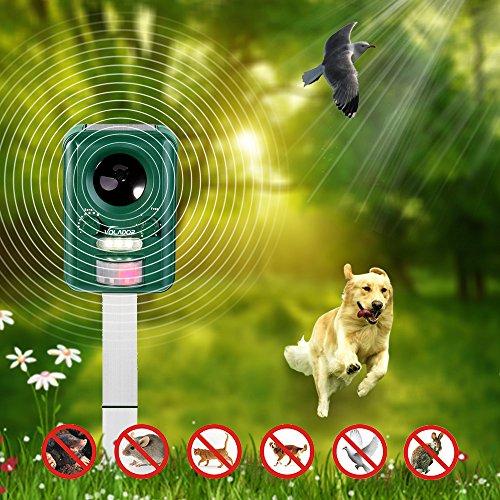 Cat And Dog Deterrent