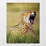 Africa Cat Cheetah Oil Painting On Canvas Wall Art Deco Home Decoration 24x36 Inches Framed