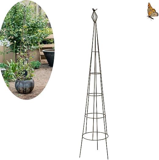 CJSWT Jardín Obelisco para Plantas trepadoras, jardín Marco de Parras Y Plantas: Amazon.es: Hogar