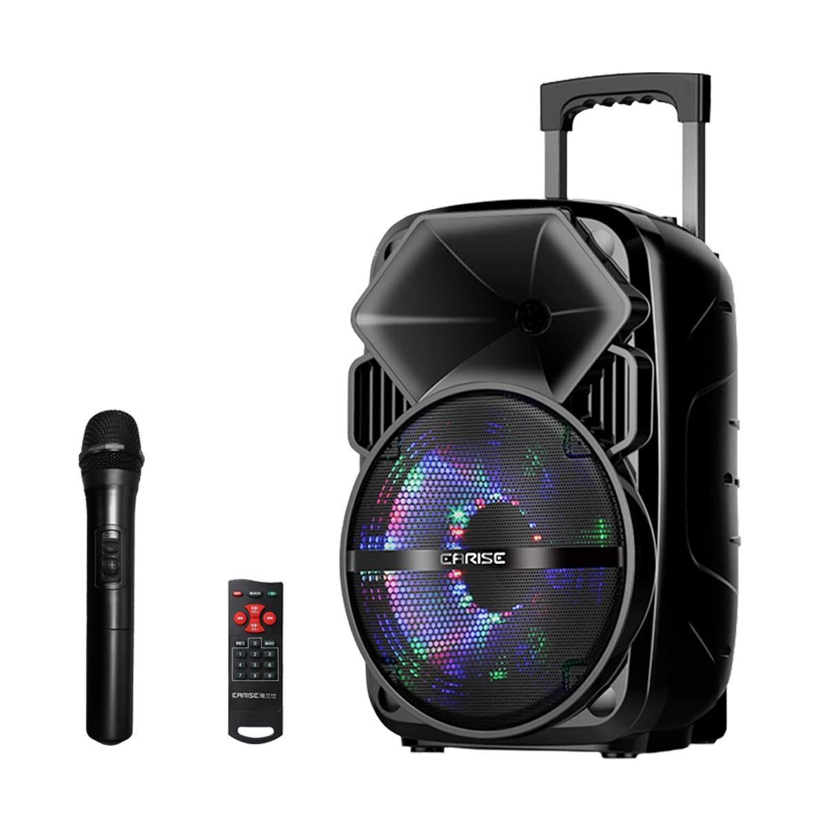 EARISE 500 Watt Bluetooth PA Speaker System with Wireless Microphone, Portable Outdoor Karaoke Machine - Fun wireless speaker for party - V30 BLACK by Earise