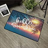 Best Sunshine Canister Vacuums - Interior Door mat W19 x L31 INCH Hello Review