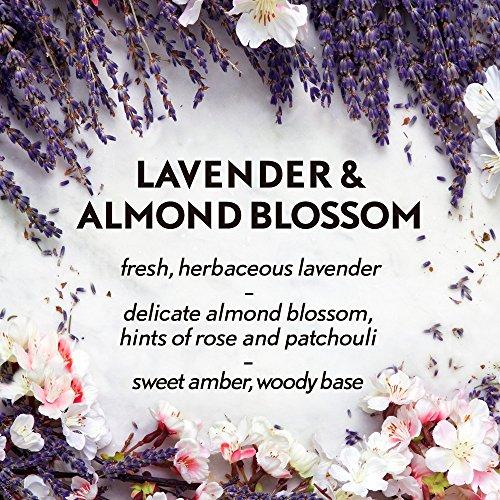 Air Wick Diffuser Mist Refill, & Almond Blossom,
