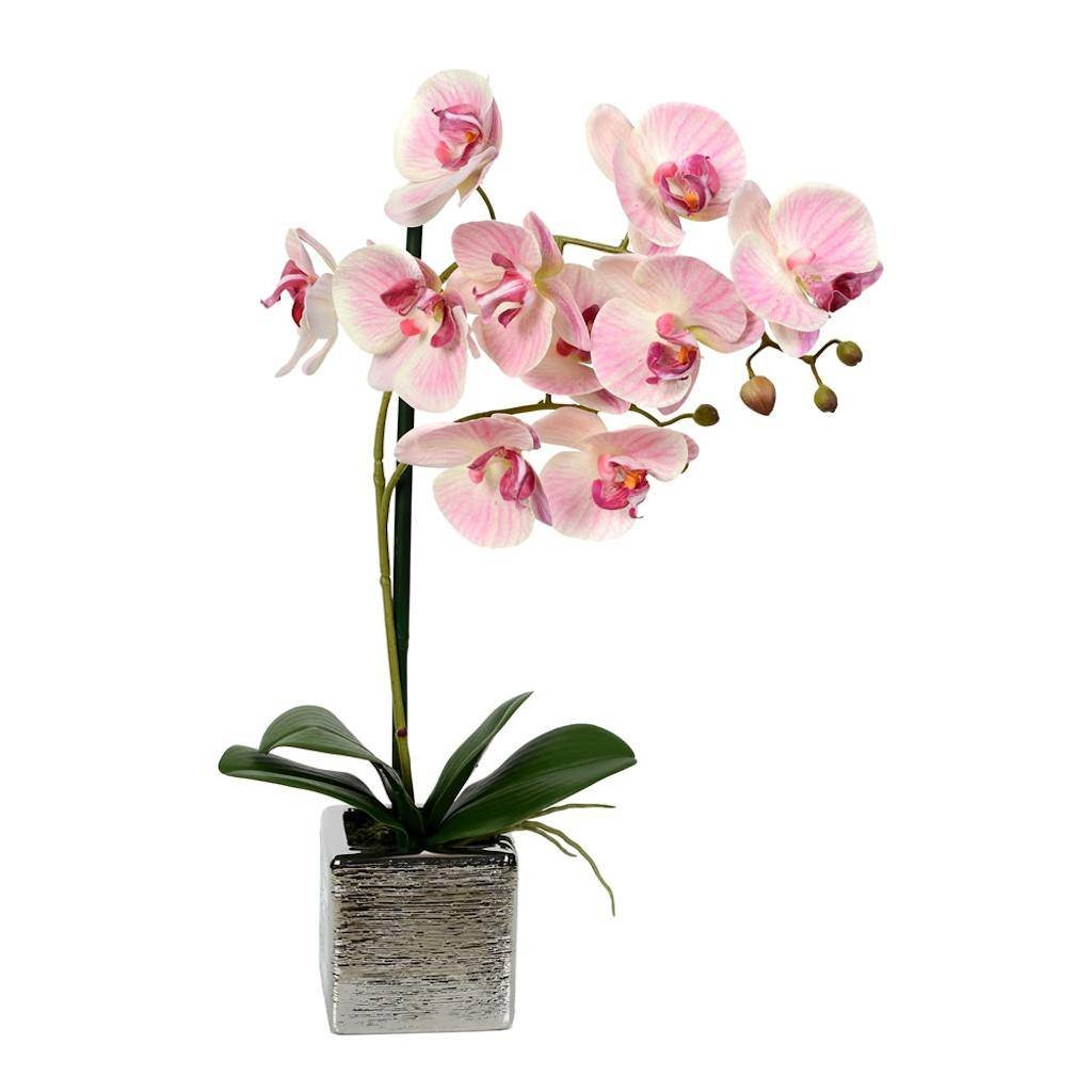 Vickerman FN180501 Pink Orchid Everyday Floral by Vickerman