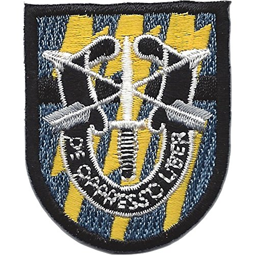 - 12th Special Forces Group Flash Patch