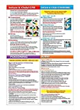 Infant & Child CPR, Choking, Poisoning & Burns First Aid Chart/Poster - 12 x 18 in. - Laminated