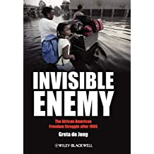Invisible Enemy: The African American Freedom Struggle after 1965 (Americas Recent Past)