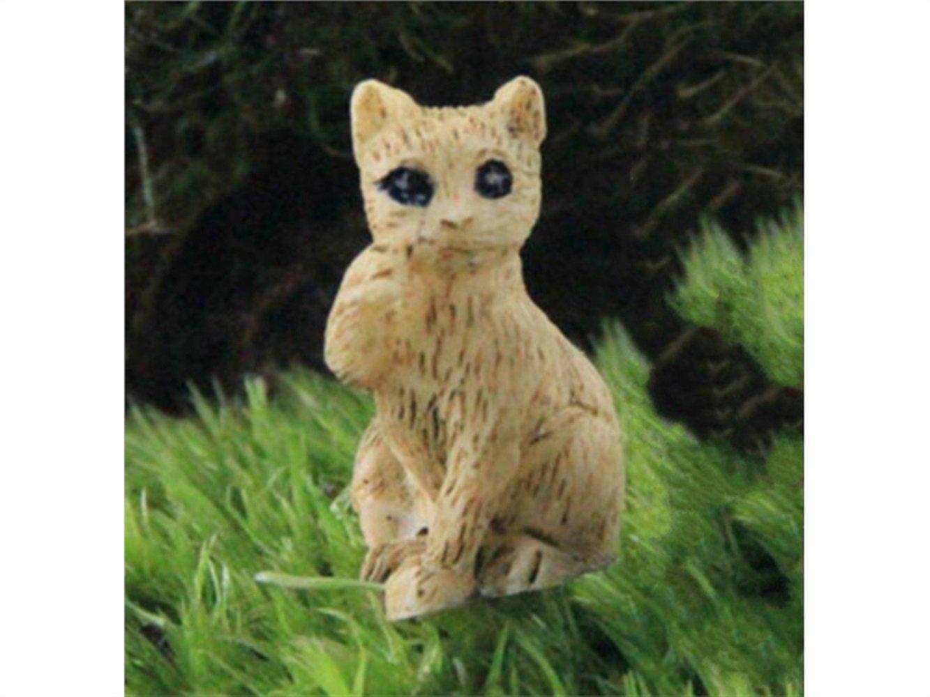 Kxrzu Groß 2 Stück Mini Katzen Micro Landschaft Garten Sukkulenten DIY Home Decor (Gelb)