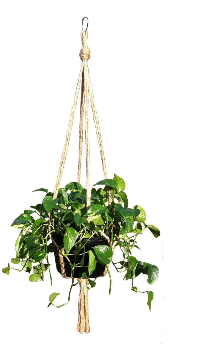 Amazon.com: Hanging Basket Plant Hanger Holders Large For Indoor And  Outdoor Jute Rope 48 Inch: Garden U0026 Outdoor