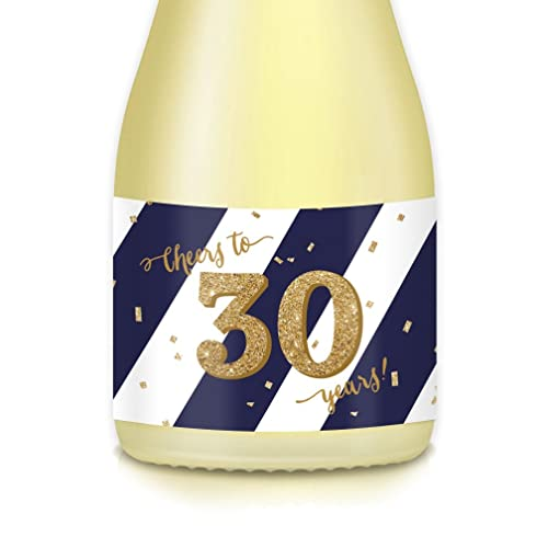 Womans 30th Birthday Gift Ideas 20 Count Mini Champagne Or Wine Bottle Labels CHEERS To 30 Years Wife Sister Aunt Coworker Celebrating Thirtieth