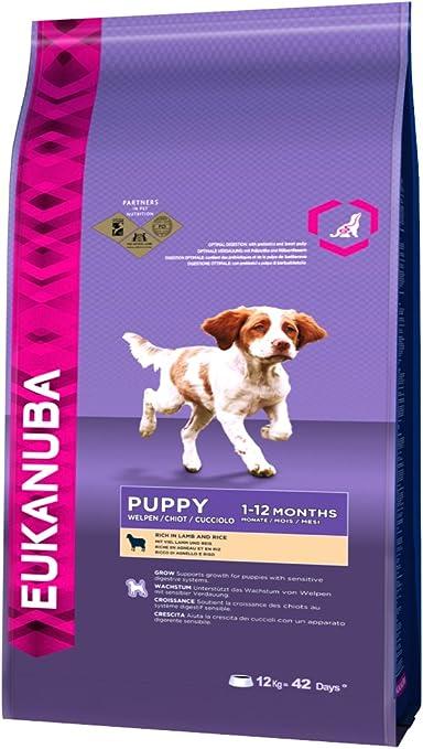 Eukanuba Adult Salmon And Rice All Breeds 12 Kg Amazon Co Uk Pet Supplies