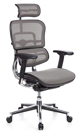 Hjh OFFICE 652100 Chaise De Bureau Fauteuil Direction Haut Gamme ERGOHUMAN Gris En