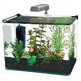 10 gallon plastic tank - Penn Plax Curved Corner Glass Aquarium Kit, Filter, LED Light, Float Glass For Maximum Viewing 10 Gallon