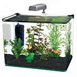Penn Plax Curved Corner Glass Aquarium Kit, Filter, LED Light, Float Glass For Maximum Viewing 10 Gallon