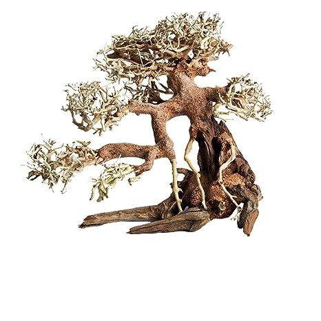 Tronco Driftwood Acuario Pecera Planta Madera Decoración Ornamento (S)