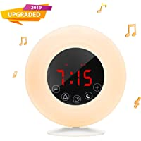 Outtdoor Wake-Up Light Sunrise Dual Alarm Clock Radio with Sunrise Sunset Simulation, 4.2 Bluetooth Speaker, 3 Natural Sounds, AM/FM Radio, Snooze Function and Bedside Lamp