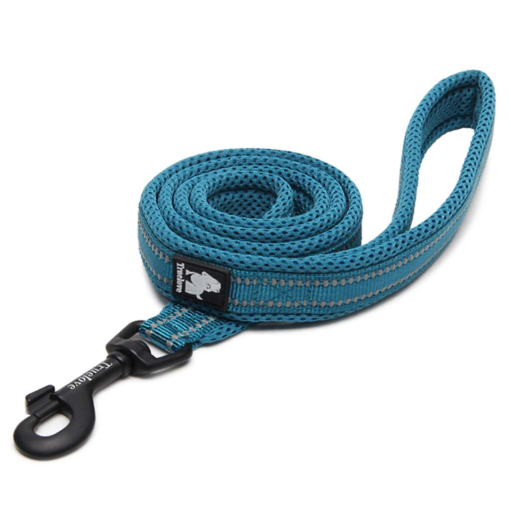 S SLH Lake bluee Traction Rope Pet Leash Dog Leash Dog Chain Dog Leash Without Collar Chest Back (Size   S)
