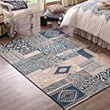 Contemporary Rustic Style Area Rugs - MeMoreCool Material Beautiful Floral Patterns in Checked Design Great Home Decoration Machine Washable 30 X 47 Inch