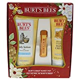 Burt's Bees Honey Pot Gift Set, 3 Honey Skin Care Products - Milk & Honey Body Lotion, Honey & Grapeseed Hand Cream and Honey Lip Balm