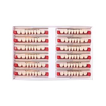 Amazon com: Easyinsmile Dental Synthetic Resin Teeth Acrylic