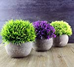 Darware Mini Artificial Topiary Shrubs in Cement Style Pots (Set of 3); Faux Flowers & Plants in Round Grey Potted Arrangement Decorating