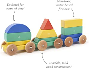 Tegu Shape Train Building Blocks (9 Piece), Big Top, One Size