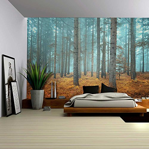 Beautiful Dreamlike Forest in Autumn Time Wall Mural
