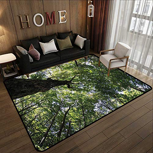 - Large Area Rugs,Forest,Summer Tree Canopy Green Leaves Branches Trunk Natural Ecology Growth Foliage Picture,Green 47