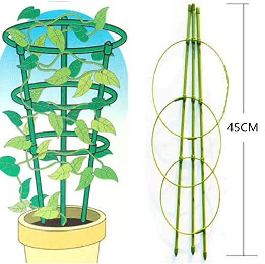 UniEco Soporte para Plantas de Enrejado de jardín, Enrejado de Tomate, Escalera de Plantas, Escalera de Apoyo, Enrejado de Pepino, 2 Unidades de estacas de 5/16 Pulgadas, 35 Pulgadas, 3 Unidades: Amazon.es: Jardín
