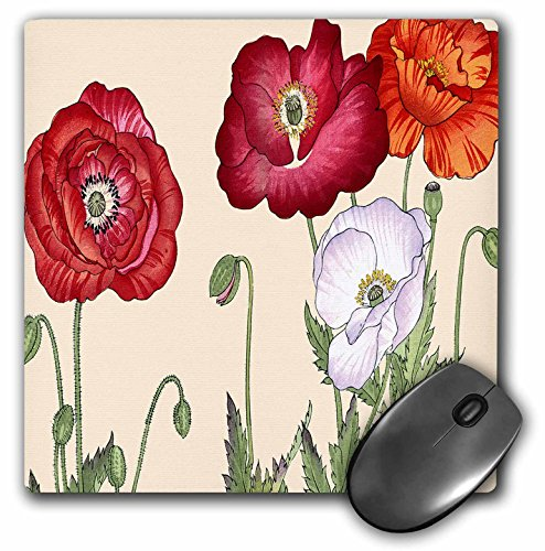 Price comparison product image 3dRose Poppy, Large Blooms in Red, Orange, Burgundy and White - Mouse Pad, 8 by 8 inches (mp_171288_1)