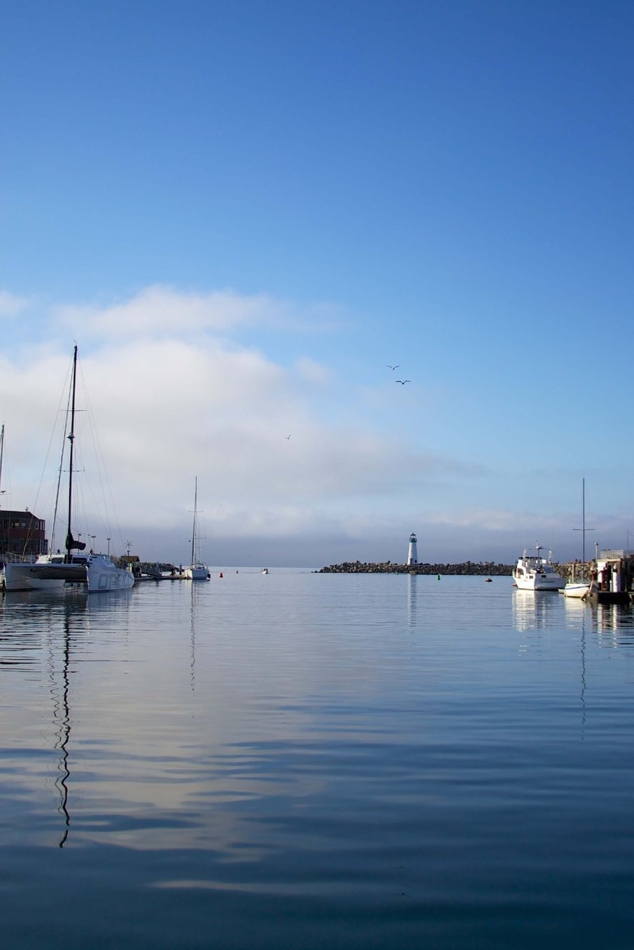 Read Online Boat Harbor in Santa Cruz, California Journal: Take Notes, Write Down Memories in this 150 Page Lined Journal pdf