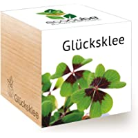 Feel Green Ecocube Glücksklee, Nachhaltige Geschenkidee (100% Eco Friendly), Grow Your Own/Anzuchtset, Pflanzen Im Holzwürfel, Made in Austria