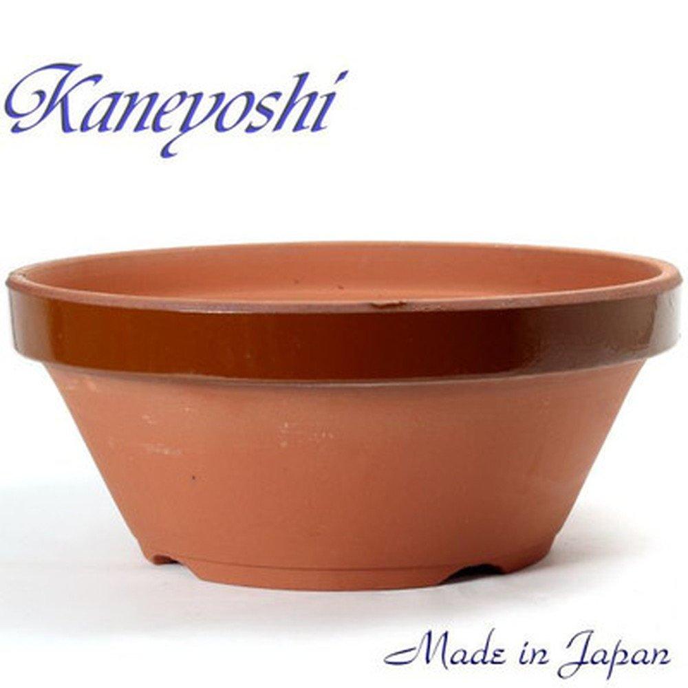 鉢 KANEYOSHI 【日本製】 陶器 植木鉢 ダ温鉢浅 6.5号 B071L5X78Z 6.5号  6.5号