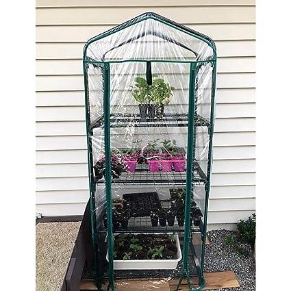 Amazon.com: JEFSHOP - Invernadero para plantas pequeñas ...