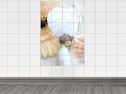 Adesivi per piastrelle mattonelle bild conchiglie e gerbara
