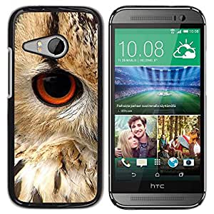 Be Good Phone Accessory // Dura Cáscara cubierta Protectora Caso Carcasa Funda de Protección para HTC ONE MINI 2 / M8 MINI // Eye Bird Animal Nature Fur Feathers
