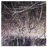 Winter Garden by Harold Budd, Robin Guthrie, Eraldo Bernocchi