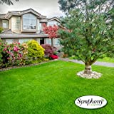 Symphony Sod Grass / Turf | Go Local - Buy Local | 500 SQ Ft. Pallet with Free Home Delivery (< $1 Per Sq)