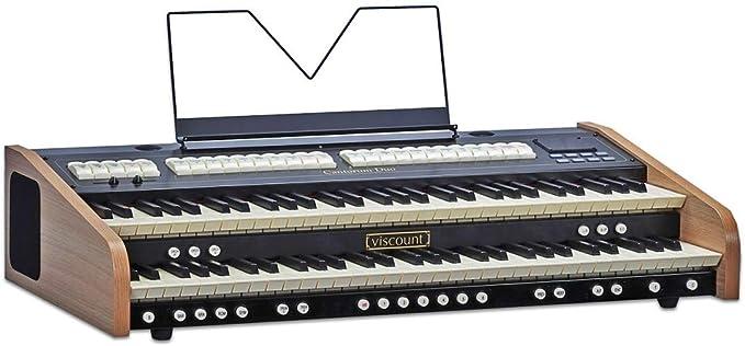 VISCOUNT CANTORUM DUO: Amazon.es: Instrumentos musicales