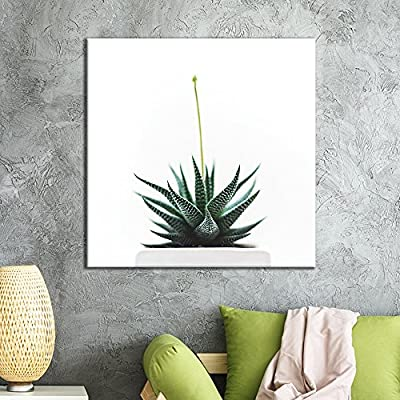 Small White Succulent Pot On White Background - Canvas Art