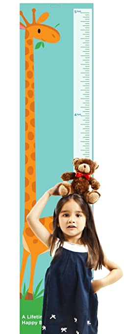 Amazon com giraffe growth chart by americord hanging height