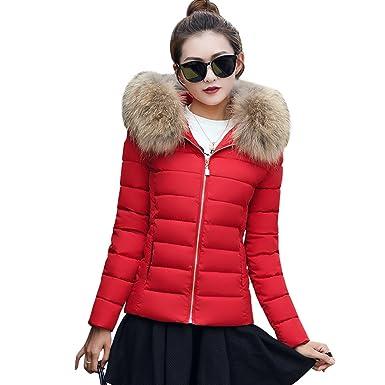 BAINASIQI 2017 Mujer Elegante Parka Court Chaqueta Acolchada Abrigo con Capucha Estola para el Invierno (