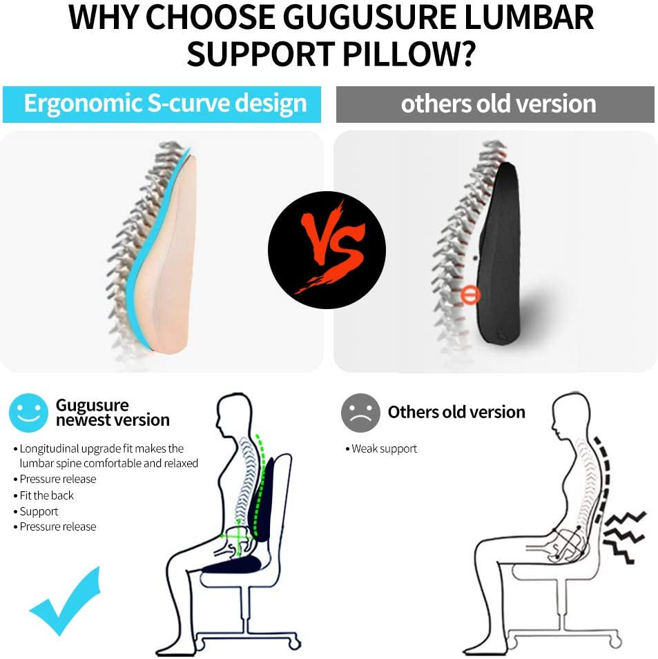 Gugusure Lumbar Support Pillow,Memory Foam Back Cushion with Breathable Mesh for Low Back Pain Relief,Orthopedic Backrest for Car Seat,Office Chair,Wheelchairs and Recliner: Office Products