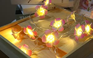 Plumeria Flower String Lights 20LED String Light Hawaiian Foam Artificial Plumeria Flower Battery Powered Fairy Starry Lights for Christmas Party Home Wedding Beach(Pink)