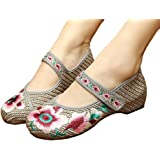 AvaCostume Chinese Embroidery Weave Oxfords Sole Girls Mary Jane Plarform Shoes