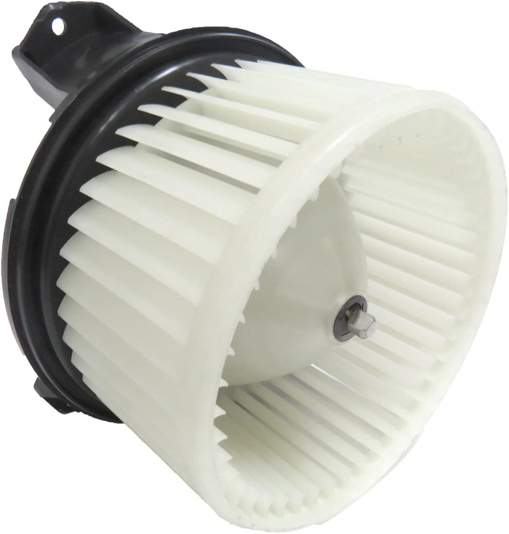 TYC 700273 Replacement Blower Assembly Compatible with Ford Mustang