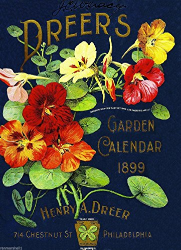 (A SLICE IN TIME 1899 Philadelphia Pennsylvania Dreer's Garden Vintage Flowers Seed Packet Catalogue Travel Advertisement Collectible Wall Decor Poster Print. Measures 10 x 13.5 inches)